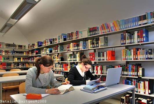 FTSK Germersheim, Bibliothek