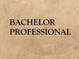 Bachelor Professional